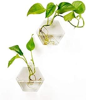 Fashionstorm 2 Packs Home Decor Wall Accessories Geometric Hexagonal Glass Vase Wall Sticked...