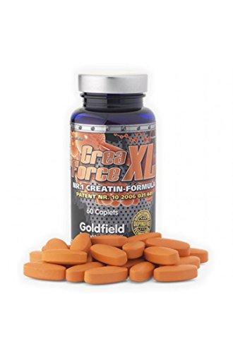 Goldfield Crea Force XL - 60 Tabletten, Pillen | Kreatin mit Magensäure Schutz - Wird nicht zu Creatinin - Ihre Muskeln werden mit 100% reinem Creatin