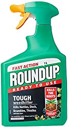 Top 10 Best Weed Killer Uk 2020 Guide And Reviews Best Reviewer
