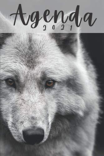 Agenda 2021 Lupo: Pianificatore Settimanale A5 | mensile 12 mesi da gennaio a dicembre 2021 | due pagine per settimana | Regalo per ragazzo uomo donna animali