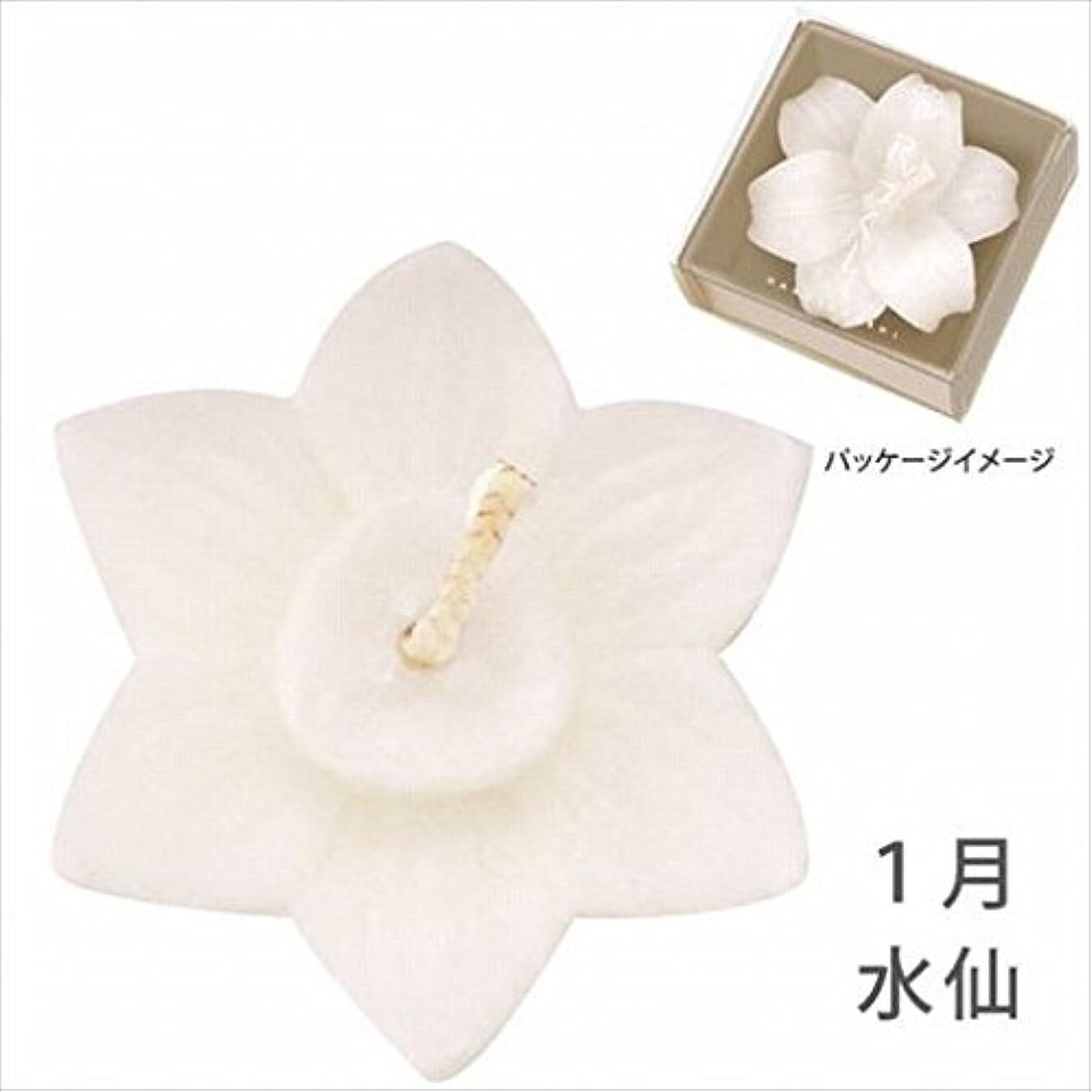 角度ホイップ恋人kameyama candle(カメヤマキャンドル) 花づくし(植物性) 水仙 「 水仙(1月) 」 キャンドル(A4620530)