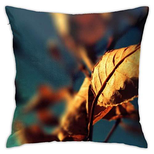 18' Imágenes Dobles Cojines Fundas Sencillas Pillowcase Hoja Funda Almohada Suave clásicas Cushion Cover