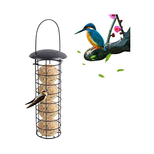 qwe XISABCS Outdoor Bird Feeder Hanging Wild Bird Seed Feeder Seed Funnel