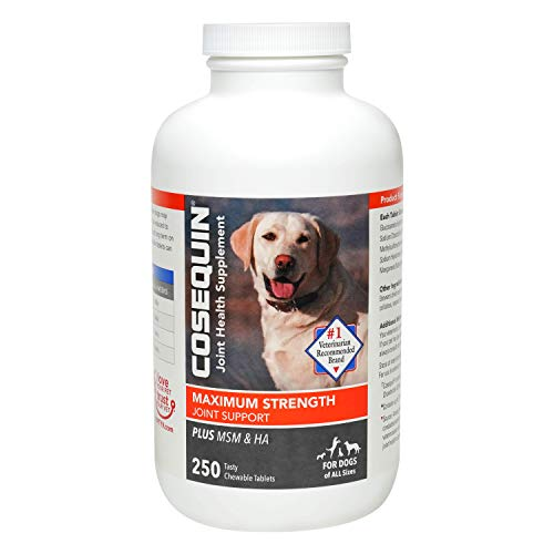 Nutramax COSEQUIN Plus MSM and HA Chewable Tablets, 250 ct