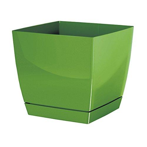 Pot de fleur vert carré 20.5 cm plastique Coubi,soucoupe amovilbe