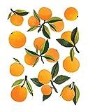 Clementine Kids Art Prints (Fresh Clementines)