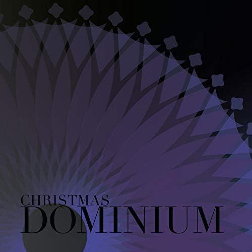 Dominium Project
