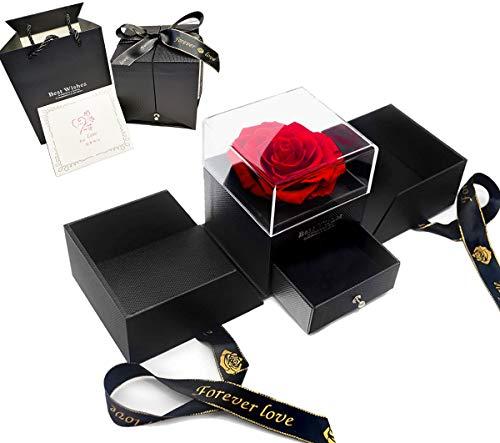 Rosen Box, Infinity Rose Schmuck Geschenkbox, Echte Rose rot, Rose Geschenk Kit zum Valentinstag, Muttertag, Jubiläum, Hochzeit, Geburtstag romantische Geschenke für Sieromantische Geschenke für Sie