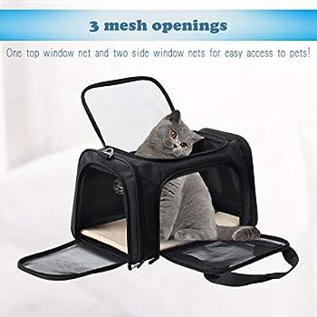 Display4top Sac de Transport Chat Chien,Portable Pliable Cage de Transport Animal,Noir