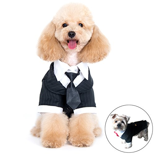 Alfie Pet by Petoga Couture – Oscar Formal Tuxedo