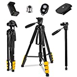 KODAK PhotoGear 2-in-1 Tripod & Monopod With Remote |