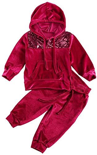 Niños bebés niñas Ropa Deportiva 2 Piezas de Terciopelo con Capucha chándal Superior Pantalones Largos Pantalones niñas pequeñas Prendas de Vestir Conjuntos (Red Wine,2-3 Años)
