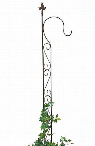 DanDiBo Support pour Plantes grimpantes avec Support 23299 Treillis en métal H-144cm B-27cm Support pour Plantes grimpantes Noir