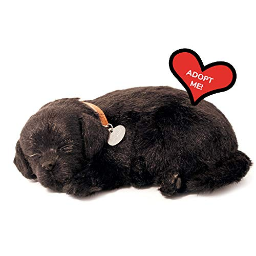 Perfect Petzzz 4910–Plüschhund– Labrador–schwarz