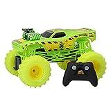 Hot Wheels 1:15 R/C Monster Truck Toxic Rodger Dodger, 61550UR