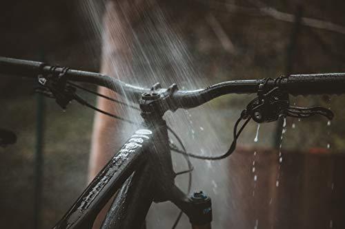 F100 2800 Fahrradreiniger, 1000 ml - 4