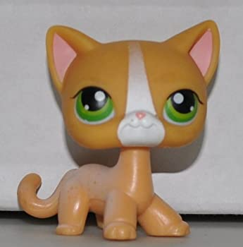 Shorthair Cat #72  Orange Green Eyes White Stripe on Nose  Littlest Pet Shop  Retired  Collector Toy - LPS Collectible Replacement Single Figure - Loose  OOP Out of Package & Print