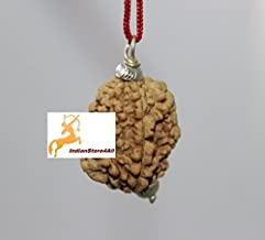 IndianStore4All Natural 2 face rudraksha pendant/ 2 mukhi silver pendant