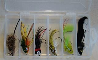 Top Water Deer Hair Fly Assortment with Large 6 Section Clear Fly Box