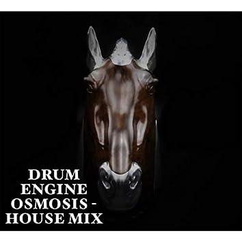 Osmosis (House Mix)