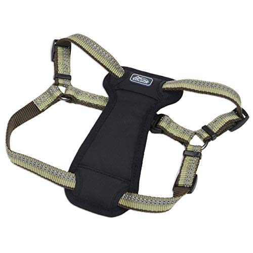 Coastal Pet Products DCP36946FRN K9 Explorer 1-Inch Harness for Dogs, Large, Fern