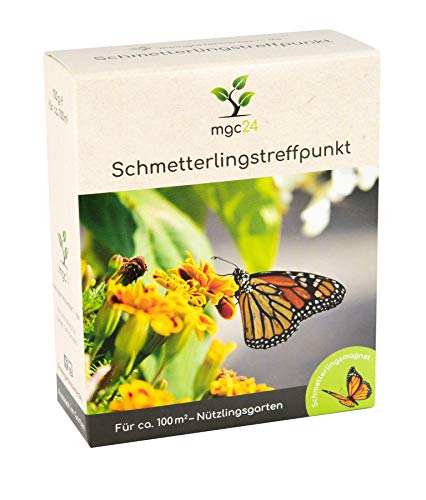 mgc24® Schmetterlingstreffpunkt - Blumenmischung für Schmetterlinge ein- & mehrjährig 100g für 100m²