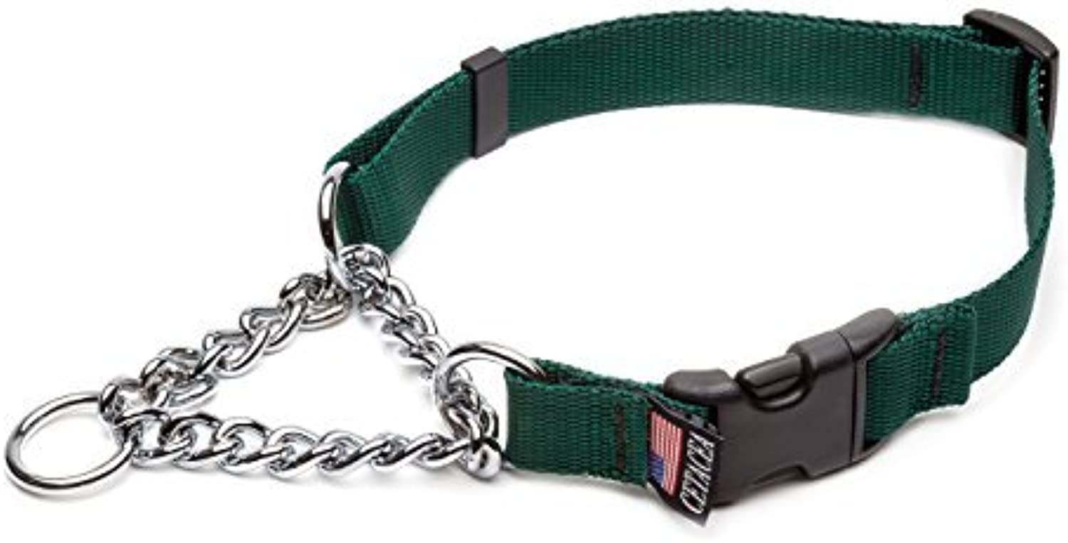 Cetacea Chain Martingale Dog Pet Collar with Quick Release, Medium, Forest Green by Cetacea