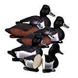 Higdon Outdoors Standard Ringneck Decoys, Foam Filled