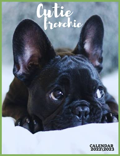 CUTIE FRENSHIE CALENDAR 2022'3: french bulldogs calendar 2022 monthly calendar size 8.5x11 inch , 18 month with high quality images glossy for everyone