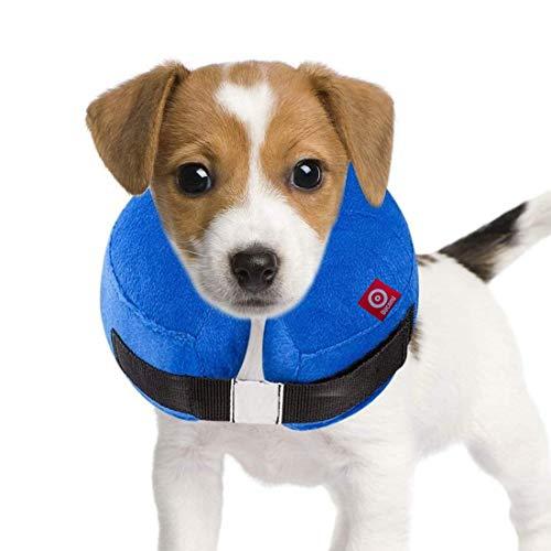 Ducomi Collare Protettivo Gonfiabile Elisabettiano per Cane e Gatto per Recupero Postoperatorio dell'Animale - libertà nei Movimenti e Vista - Previene l'Infezione da Graffi e Morsi (Blue, L)