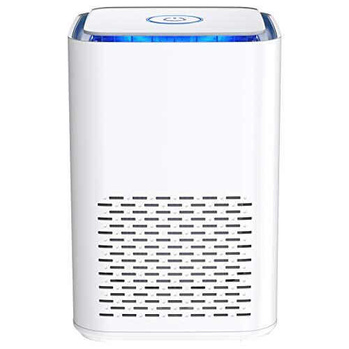 Purificatore d'Aria con H13 filtro HEPA,Effetti Filtrazione 99,97%, Silenzioso filtro dell'aria USB con Funzione Aromaterapia e Luce notturna,per Casa Ufficio, Allergie, Formaldeide, Fumi