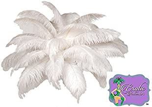 White OSTRICH Feathers Wholesale Bulk SPECIAL SALE 12 to16