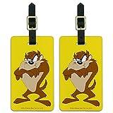 Looney Tunes Taz - Juego de 2 etiquetas para equipaje