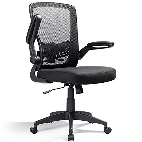 DEVAISE Mesh Computer Office Chair, Ergonomics Computer Desk Chair with Flip-up Armrest and Adjustable Lumbar Support, Black
