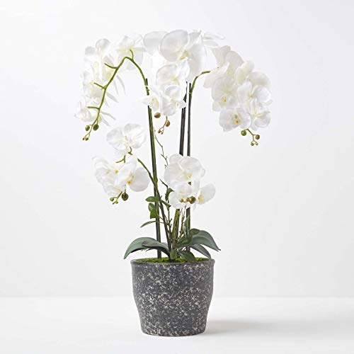 HOMESCAPES Large Artificial Green & White Orchid in Pot 82 m Tall Lifelike Faux Orchid Plant In Grey Cement Pot Real Touch Silk Flowers and Green Leaves Phalaenopsis Orchid Flower Indoor Decoration