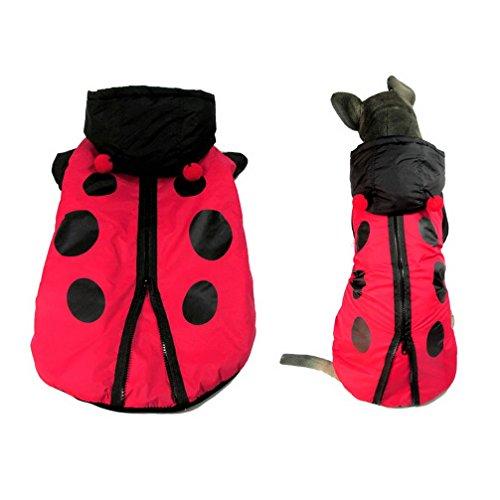 Ranphy cane vestiti per m Doggy coccinella costume Pet/gatto abbigliamento cappotto con cappuccio