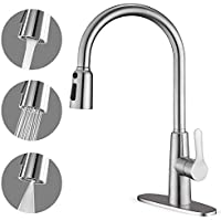 Corysel Single Handle Kitchen Faucet with Pull Down Sprayer