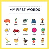 My First Words : Toddler's First Words | Speech Therapy For Toddlers | Learning Book For 1-3 Years Old | Modern Montessori | Gifts For 1 Year Old (English Edition)
