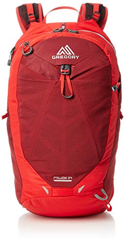 Gregory Mountain Products Men's Miwok 24 Hiking Backpack,VIVID RED
