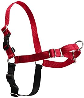 PREMIER Small/Medium Red Easy Walk Harness