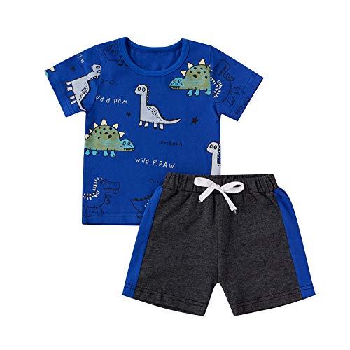 Juego de 2 Piezas de Ropa Deportiva para Niño Bebé Conjunto Camiseta de Manga Corta con Estampado de Dinosaurio + Pantalones Cortos Deportivos (Azul, 2-3 Años)