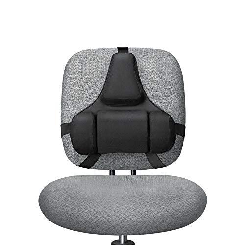 Fellowes Mfg Co. 8037601 Professional Series Back Support, Memory Foam Cushion, Black