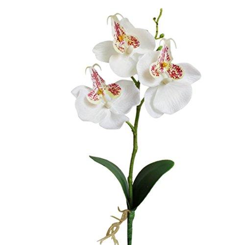 Sunday Wohnaccessoires & Deko Kunstblumen Künstliche Triple Head Künstliche Schmetterling Orchidee Seide Blume Startseite Hochzeit Dekoration 1 pc hat 3 Blumen (Weiß)
