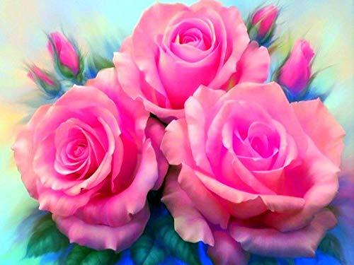 Cuadro de diamante cuadrado rosa 5D DIY juego de arte de bordado de diamantes regalo hecho a mano decoración del hogar pintura de diamante A5 30x40cm