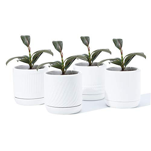 POTEY 053501 Plant Pots with Drainage Holes & Saucer - 4.2 Inch Glazed Ceramic Modern Planters Indoor Bonsai Container for Plants Flower Aloe(Set of 4, Shiny White, Plants Not Included)