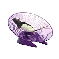 (スモールNファーリー) Small N Furry 小動物用 フライング・ソーサー 回し車 おもちゃ 小動物用 ペット用 (5インチ (約12.7cm)) (ランダム)