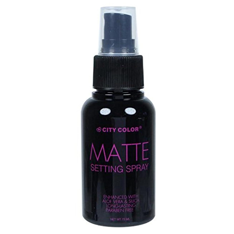 歴史支店歯科医(6 Pack) CITY COLOR Matte Setting Spray (並行輸入品)