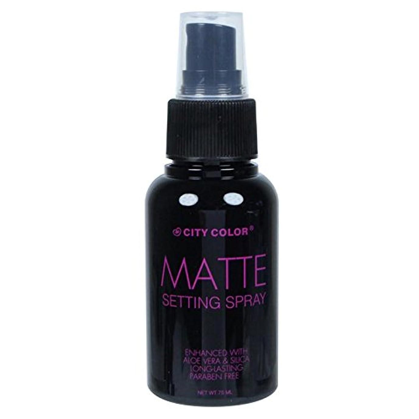 パントリー寄付未使用(6 Pack) CITY COLOR Matte Setting Spray (並行輸入品)