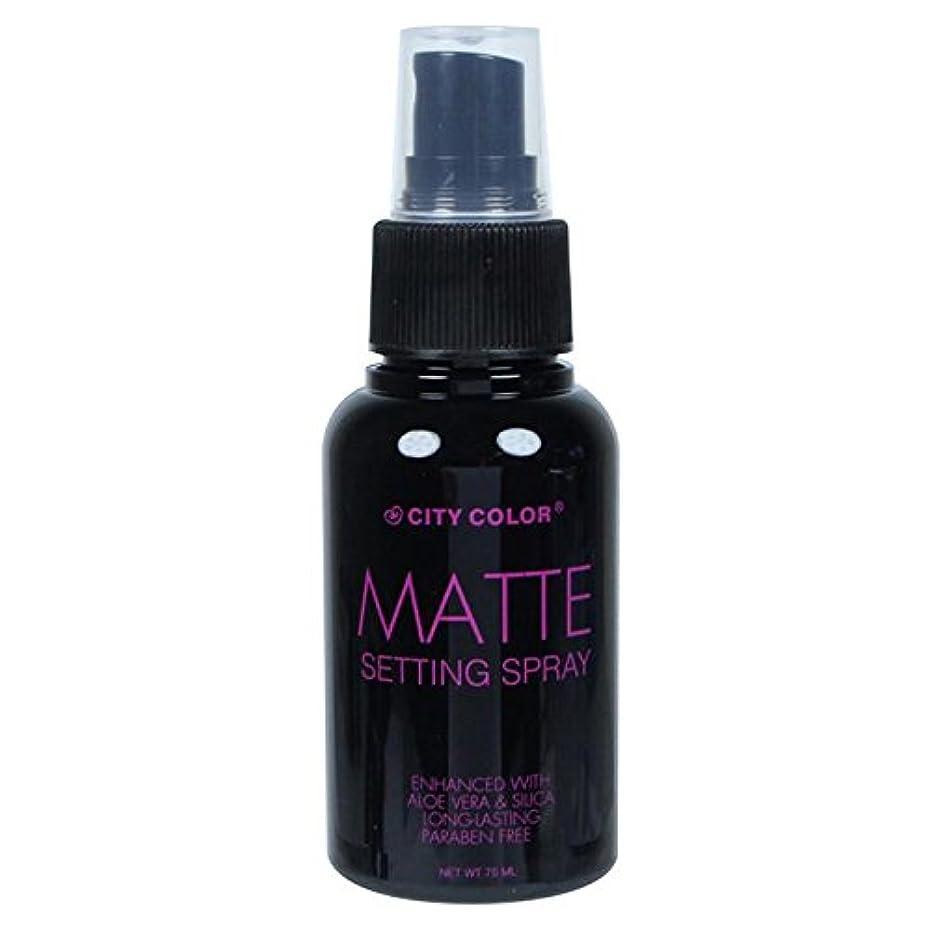 染色パシフィックレキシコン(6 Pack) CITY COLOR Matte Setting Spray (並行輸入品)
