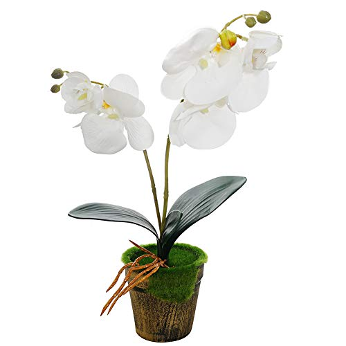 Artificial Orchid Flowers with Vase Fake Phalaenopsis Flower Arrangement Vintage Bonsai for Indoor Outdoor Wedding Home Office Decoration (White)